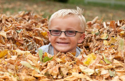 Netter Junge in den Herbst-Blättern lizenzfreie stockfotografie