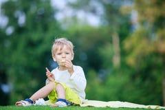 Netter Junge, der Eiscreme in einem Park isst Stockfotos