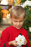 Netter Junge hält Weiß stieg an Stockfoto