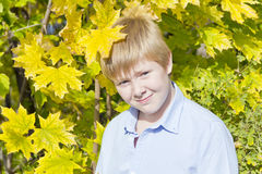 Netter Junge im Sonnenlicht Stockfotografie