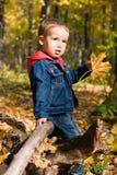 Netter Junge und fallende Blätter Stockfoto