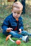 Netter Junge und Pilze Stockfoto