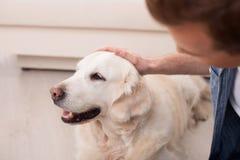 Netter junger Mann ist von seinem Haustier mitfühlend stockbild