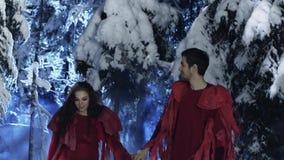 Netter junger Mann und Frau in der roten Kleidung gehen langsam in Holz des verschneiten Winters stock video