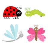 Netter Karikaturinsektensatz. Marienkäfer, Libelle, Schmetterling und versorgen Stockfotos
