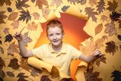 Netter Kinderjunge, der Goldblatt auf gelbem Hintergrund hält Kind annoncieren Ihr Produkt und Service Kind, das im Herbst spielt stockfoto
