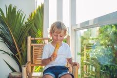 Netter kleiner blonder Junge, der eine selbst gemachte Eiscreme sitzt auf einem Holzstuhl isst Stockfoto
