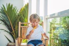 Netter kleiner blonder Junge, der eine selbst gemachte Eiscreme sitzt auf einem Holzstuhl isst Lizenzfreie Stockfotografie