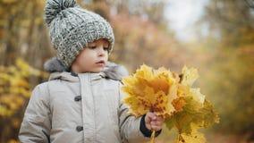 Netter kleiner Junge, der einen Blumenstrauß des Herbstlaubs hält stock footage