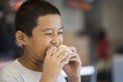 Netter kleiner Junge, der einen Cheeseburger isst Lizenzfreies Stockbild