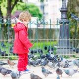 Netter kleiner Junge, der mit Tauben in der Stadt fängt und spielt Stockbild