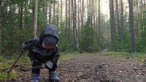 Netter kleiner Junge, der am Park im Kiefernwald geht, Spaß hat und mit Stock, kleiner Jäger spielt stock footage