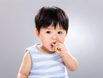 Netter kleiner Junge, der Plätzchen isst Lizenzfreies Stockfoto