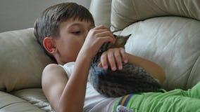 Netter kleiner Junge mit Katze auf Sofa stock video footage