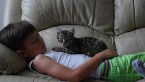 Netter kleiner Junge mit Katze auf Sofa stock video