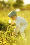Netter kleiner Junge mit Löwenzahn Stockfotos