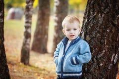 Netter kleiner lächelnder Junge des Porträts in einer gestrickten Strickjacke spielt nahe einem Baum im Herbstpark Lizenzfreie Stockbilder
