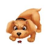 Netter kleiner Pelzwelpe - Karikatur-Tiercharakter-Maskottchen, das mit Marienkäfer spielt Lizenzfreies Stockfoto