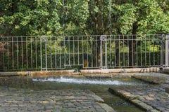 Netter kleiner Wehrwasserfall in einem allgemeinen Park Lizenzfreie Stockbilder