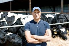 Netter Landwirt umgeben durch Kühe auf Bauernhof stockfotografie