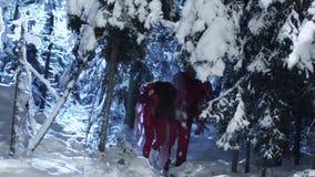Netter Mann und die Frau, die rote Kleidung trägt, ziehen langsam in Wald des verschneiten Winters um stock footage