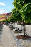 Netter Marktplatz mit vielen grünen Bäumen während des heißen Sommertages Stockbilder