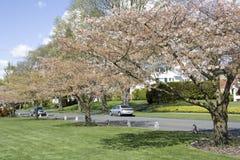 Netter Nachbarschaftspark Lizenzfreie Stockfotografie