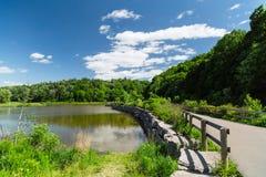 Netter Naturhintergrund Parks des im Freien mit flaumigen Wolken des blauen Himmels am sonnigen Tag des Sommers Lizenzfreies Stockbild