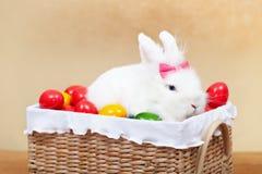 Netter Osterhase, der im Korb mit bunten Eiern - Nahaufnahme sitzt Lizenzfreies Stockbild