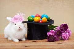 Netter Osterhase mit Frühlingsblumen und bunten Eiern Stockfoto