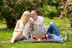 Netter Paarurlauber auf Picknick Stockfoto