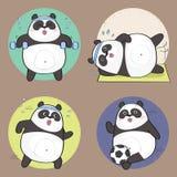 Netter Panda des Handabgehobenen betrages Lizenzfreie Stockbilder