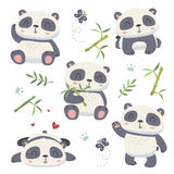 netter Pandasatz der Karikaturart Stockbilder