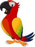 Netter Papagei der Karikatur stock abbildung