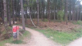 Netter Park Stockbild