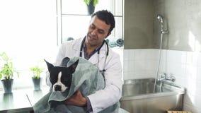 Netter reifer männlicher Tierarzt, der netten Hund nachdem dem Waschen an der Klinik trocknet Stockbilder