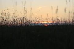 Netter roter Sonnenuntergang in einem Sommer Stockbild