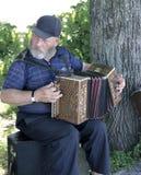 Netter russischer Akkordeonspieler am Baum stockfotos