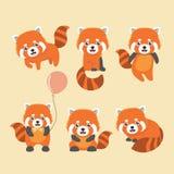 Netter Satz des roten Pandas Lizenzfreies Stockfoto