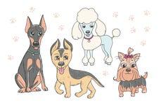 Netter Satz lustige reinrassige Hunde Lizenzfreies Stockfoto