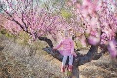 Netter schöner stilvoller gekleideter Brunette und blonde Mädchenschwestern, die auf einem Feld des jungen Pfirsichbaums des Früh Stockfotos