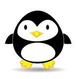 Netter schauender Pinguin, der alleine steht Stockfoto