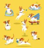 Netter Steckfassungsrussell-Terriersatz, lustiger Schoßhundcharakter in verschiedenen Situationskarikatur-Vektor Illustrationen Stockbilder