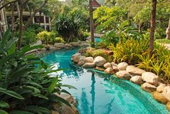 Netter Swimmingpool im Garten stockfotos