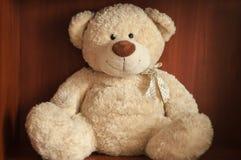 Netter Teddybär Stockbild