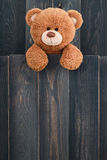 Netter Teddybär Stockfotografie
