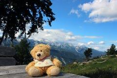 Netter Teddybär, der auf unbemalten hölzernen Brettern mit Bergen als Hintergrund sitzt stockbild