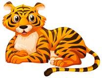Netter Tiger, der auf weißem Hintergrund sitzt Lizenzfreie Stockfotos