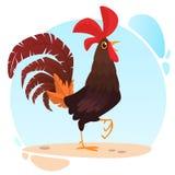 Netter Vektorkarikatur Hahn Illustration eines bunten Hahns, der auf einem Bein steht Stockfotos