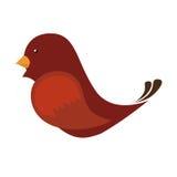 Netter Vogel lokalisierte Ikone Stockbilder